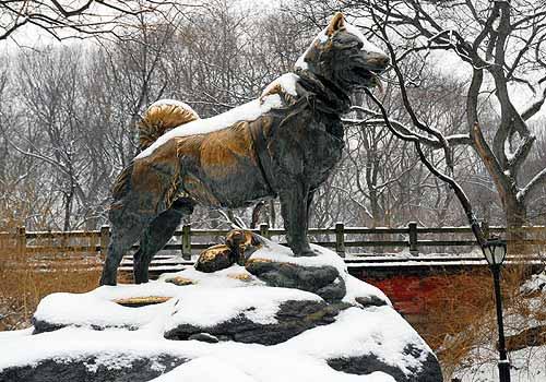 Balto estatua central park