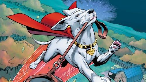 El perro de supermán