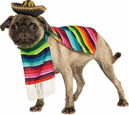 Nombres mexicanos para perro