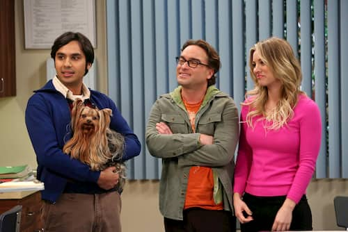 cinnamon big bang theory