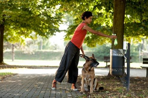 Mujer con su perro paseando