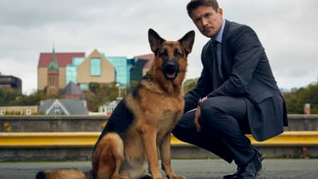 película rex un perro policía