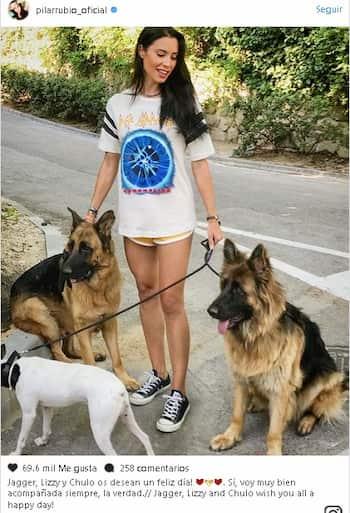 Jagger y lizzy, perros de sergio ramos
