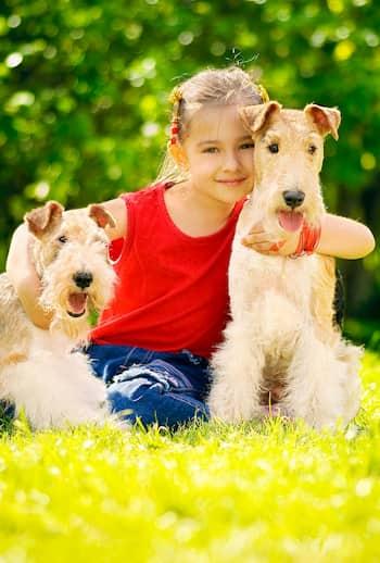 nombres de parejas para perros