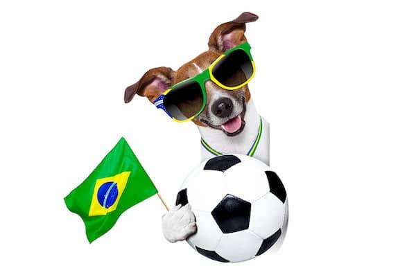 nombres brasileños para perros