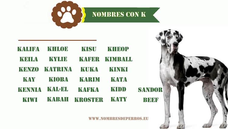 Nombres de perros con K